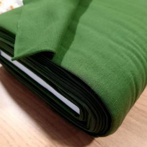 Bord cote vert foret 2