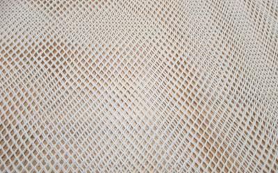 Filet mesh 1
